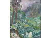 Landschap in Tahiti