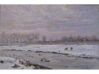 Het landje van Höcker aan de Bennebroekerdijk in de winter.