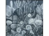 z-  landschap van cactussen