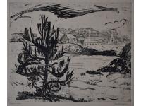 z- Berglandschap met dennenboom