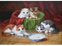 4 afwachtende katjes