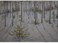 z- Besneeuwde Russische bossen
